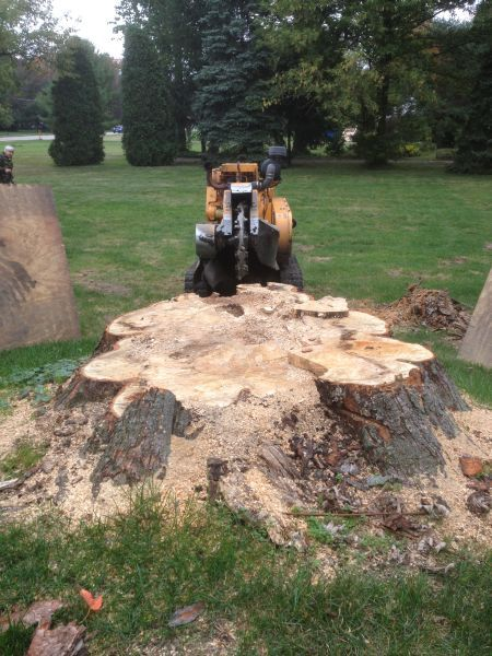 Stow Ohio - Stump Grinding
