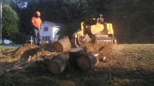Stump Grinding in Massillon Ohio